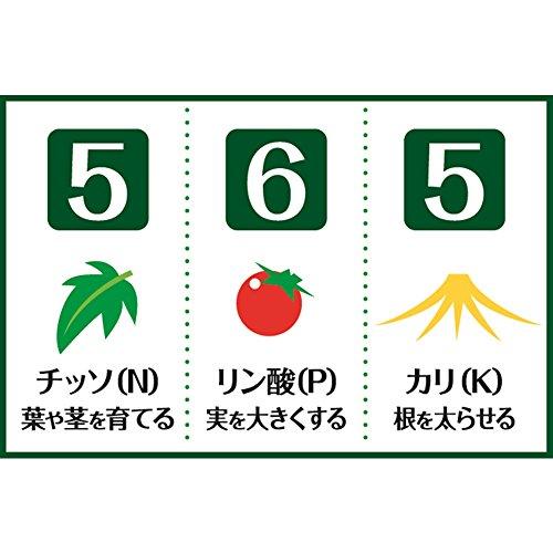 渡辺泰 レバープランツ 乳酸有機トマトの肥料 約50g2個入 2個入り 1苗1回分