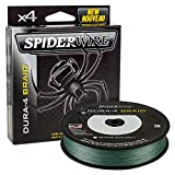 SpiderWire Dura4 Braid