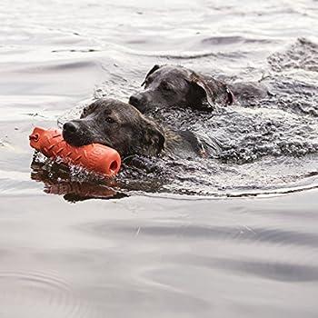 KONG - Dog Training Dummy - Boudin de Dressage Flottant à rapporter - pour Chien Grande Taille