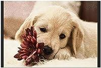 ゴールデンレトリバーペット犬動物 Diy 5D ダイヤモンド塗装キット DIY クリスタルアートキットステッカー絵画ダイヤモンドキット