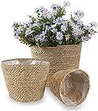BSLVWG Seagrass - Juego de 3 cestas tejidas a mano para el almacenamiento de macetas de interior con plástico impermeable para decoración moderna del hogar (marrón)