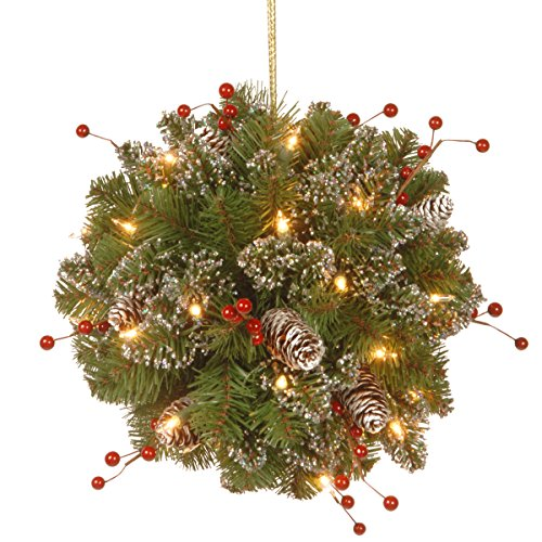 National Tree Company Pre-lit Artificial Christmas Kissing Ball Flocked with Mixed Decorations and White LED Lights, Glittery Mountain Spruce-12 Inch, 12'