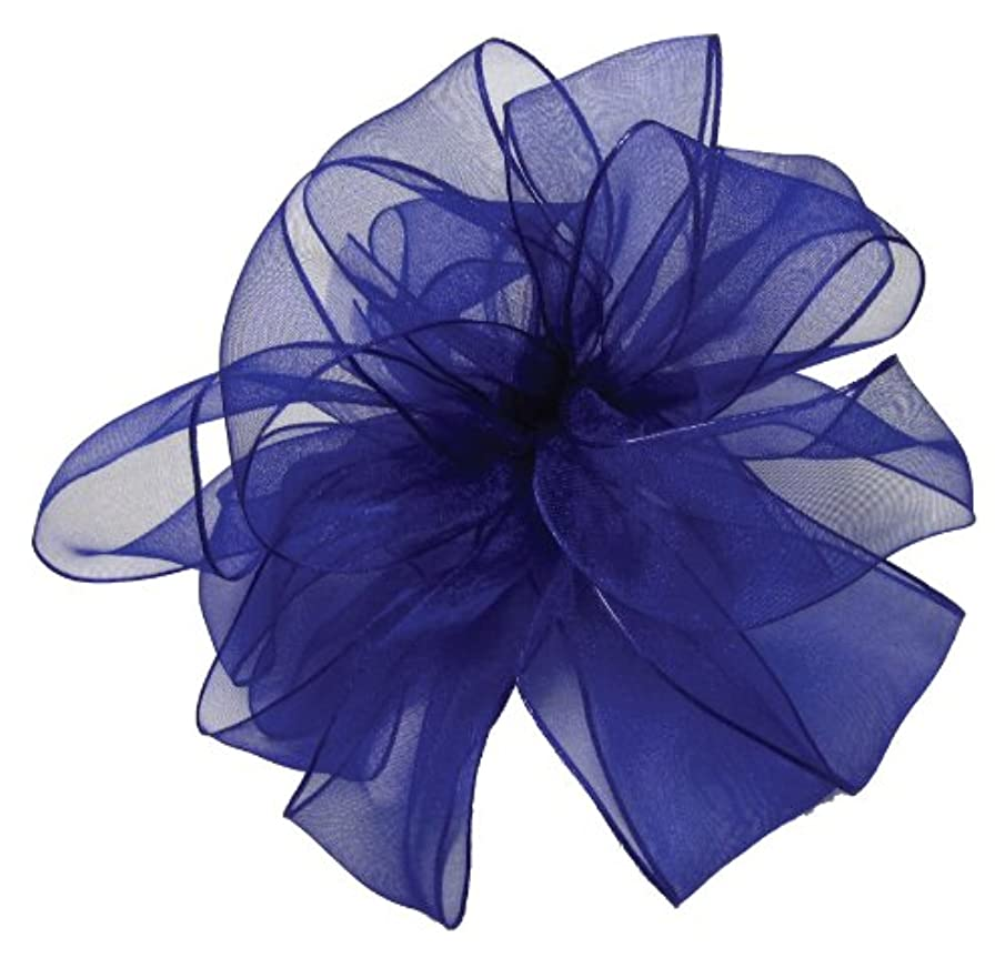 Offray Wired Edge Encore Sheer Craft Ribbon, 2-1/2-Inch Wide by 25-Yard Spool, Royal