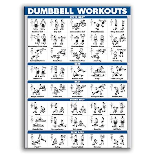 XUNXI Fitness Poster , Bodybuilding Gym Sport Fitness Hantel Poster Kettlebell Workout Übung Training Diagramm Kunst Wand Poster Print Home Dec 12#