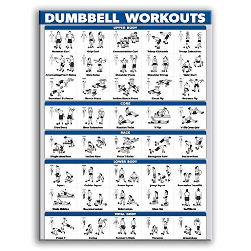Buwei Bodybuilding Gym Poster Laminado Deporte Personal Fitness Dumbbell Wall Home