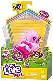 Little Live Pets Lil' Bird – Tiara Tweets – Paquete Individual de pajarito de Little Live Pets – Nueva Cabeza móvil, más de 20 Sonidos de Aves, reaccionado al Tacto, 26028