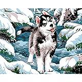Kits de pintura por números para niños, Husky siberiano en la nieve, pintura al óleo de animales, regalo de Navidad único, lienzo enmarcado, arte para el hogar