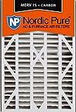 Nordic Pure Trion Air Bear Cub 266649-101 Pleated AC Furnace Air Filter, 1
