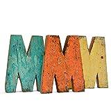 *Fantastik - Lletra de fusta reciclada (M)