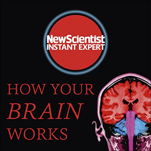 How Your Brain Works audiobook cover art