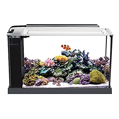 Fluval Sea Evo Saltwater Fish Tank Aquarium Kit