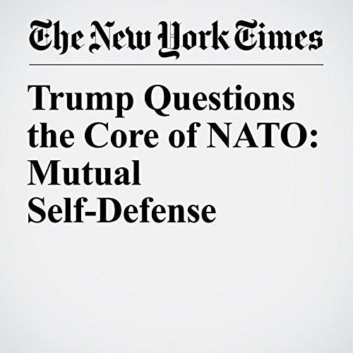 Trump Questions the Core of NATO: Mutual Self-Defense copertina