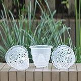 nobran Maceta transparente de plástico con ranura para orquídeas de 10/12/15 cm, ideal para controlar la humedad y el crecimiento de las raíces (10 cm).