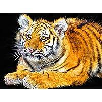 ジグソーパズル - タイガー成人教育パズル - のために最適なリラクゼーション瞑想500 / / 5000/4000分の6000個/ 3000/1500分の2000 1000年 210220 (Color : No partition A, Size : 2000 pieces)