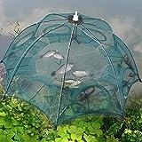 Gind Red de Pesca al Aire Libre, Jaula Duradera para Peces de Red de Aterrizaje de 8 Agujeros, para Peces camarones