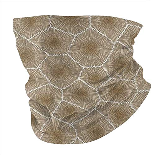 Petoskey Stone Multifunctional Headwear Face Cover Headband Neck Gaiter Bandanas for Dust, Outdoors, Festivals, Sports-one_color-
