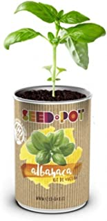 Amazon.es: SeedBox - Kits de cultivo en casa / Plantas, semillas y ...