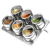 Botes para especias, 6 piezas Pote de condimento magnético de acero inoxidable - Perchero...