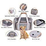 Zoom IMG-2 pet u trasportino per cane