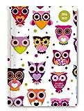 Collegetimer Pocket Owls 2016/2017 - Schülerkalender A6 - Weekly - 224 Seiten