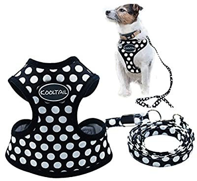 Puppy Harness and Leash for Small Dog Soft Mesh Pet Vest