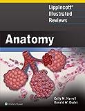Lippincott® Illustrated Reviews: Anatomy (Lippincott Illustrated Reviews Series)