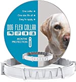 CRUZYO Flea and Tick Prevention for Dogs - One Size Fits All - Waterproof Best Protection and Adjustable - 8 Month Essential Natural Herbal Oil - Gray
