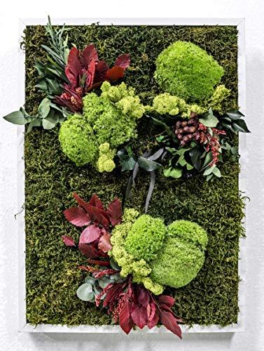 Mi Jardín Vertical Musgo Preservado Cuadro Vegetal 50 x 70 cm (Montmartre)