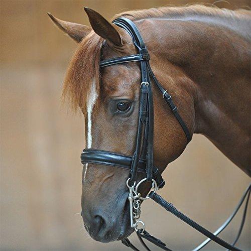 KAVALKADE Kandarenzaum DACIRA Ecoline schwedisch kombiniertes Reithalfter, schwarz/schwarz, Pony (P2)
