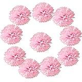 Hmxpls 10pcs Tissue Hanging Paper Pom-poms Flower Ball Wedding Party Outdoor Decoration, Premium Tissue Paper...