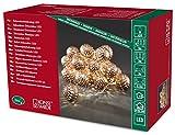 Konstsmide 3156-603 LED Dekolichterkette 'bronzefarbene Metallbälle' / für Innen (IP20)  24V Innentrafo / 24 warm weiße Dioden / transparentes Kabel
