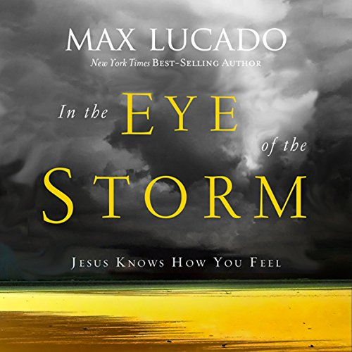 In the Eye of the Storm audiobook cover art