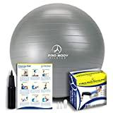 Exercise Ball - Professional Grade Anti-Burst Yoga Fitness, Balance Ball for Pilates, Yoga, Stability Training and Physical Therapy (Silver, 55cm)