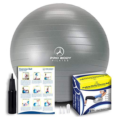 Exercise Ball - Professional Gra...