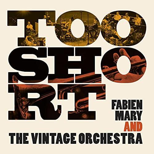 Fabien Mary & Vintage Orchestra