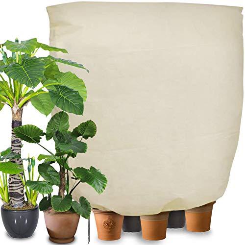 Winterschutz für Pflanzen Frostschutz, 240 x 200cm Frostschutz Schutzhaube mit Reißverschluss für Baum Palmen Balkonpflanzen haube Zelt Atmungsaktiv - Reißfest - Wiederverwendbar(Beige)