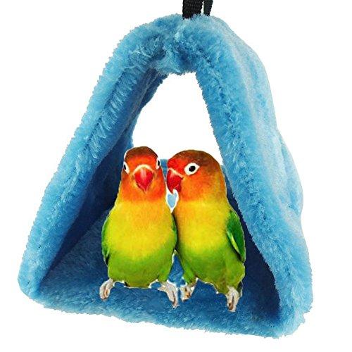 Bello Luna Loro Azul Nido de pájaro Mascota Nido de
