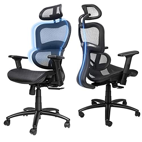 Ergousit Ergonomic Office Desk Chair Adjustable Headrest 3D Flip-up Armrests Seat Height Ergonomic Computer Chair,Executive, Drafting, Gaming or Office Chair (Black)
