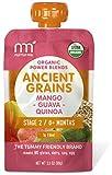 NurturMe Power Blends Organic Baby Food Pouch, Mango + Guava + Quinoa, 3.5 Ounce (Pack of 6)