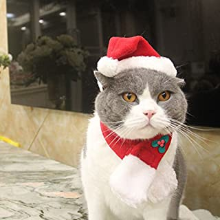 EXPAWLORER Christmas Cat Costume Santa Hats - Xmas Gift Hat with Scarf for Mini Dogs Puppy, Adorable and Warm