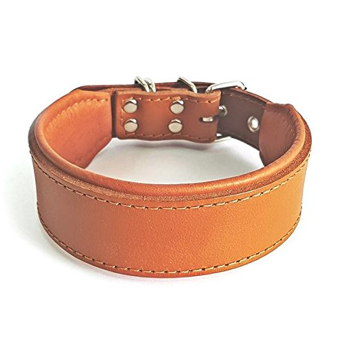 Bestia 'Classic Padded Leather Dog Collar. Hand Made in Europe. Up to 2 inch Width, 100% Leather, 7 Sizes