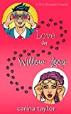 Love On Willow Loop (Fake It) (English Edition)