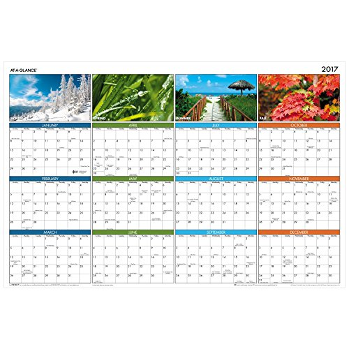 AT-A-GLANCE Wall Planner Calendar 2017, Erasable, Yearly, Reversible, 36 x 24', Seasons in Bloom (PA133)