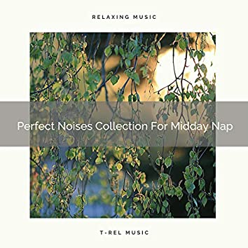 Perfect Noises Collection For Midday Nap
