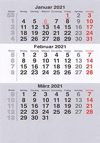 HiCuCo Kalendarium (lose Blätter) für 2 Jahre (2021 und 2022) passend für 3-Monats-Tischkalender Edelstahl TypB