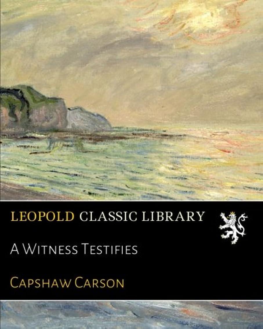A Witness Testifies
