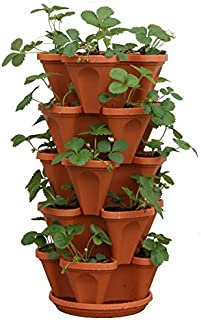 Best large clay strawberry pots Reviews