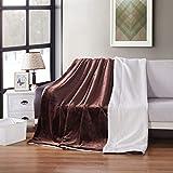 Cobija Gruesa Manta del Tiro Sherpa Caliente Ropa de Cama Mantas Color sólido para casa Dormitorio (Color : E, Size : 100x120cm)