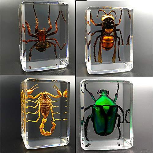 insetti in resina, Giocattoli Animali Esemplare Fermacarte...
