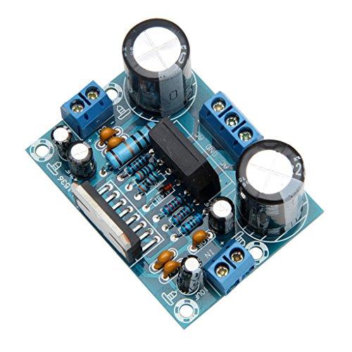 MYA Digitaler Verstärker-Karte, Verstärker-Karte, Digitalverstärker, TDA7293, 12 V-32 V, 100 W, Einkanal AMP auf einem Kanal